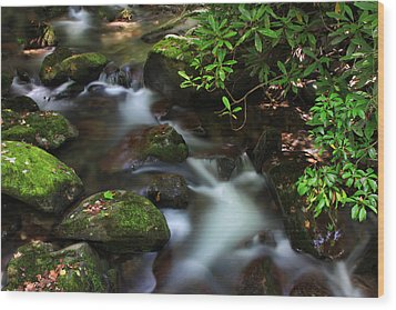 Green Stream Wood Print