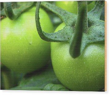Green Tomatoes No.3 Wood Print by Kamil Swiatek