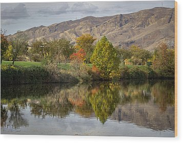 Green Tree Pond Reflection Wood Print
