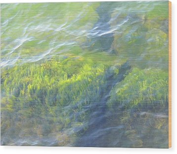 Wood Print featuring the photograph Green Water by Beth Akerman