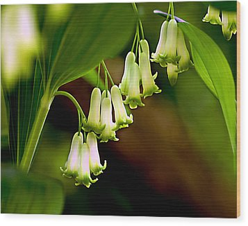 Wood Print featuring the photograph Green White Bells by JoAnn Lense
