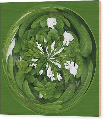 Green-white Orb Wood Print by Bill Barber