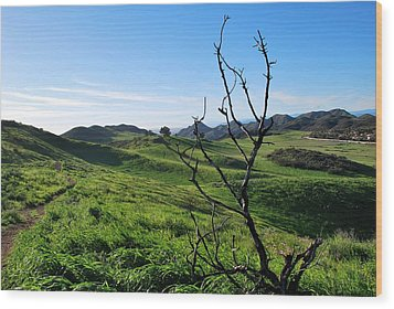 Wood Print featuring the photograph Greenery In The Hills Landscape by Matt Harang