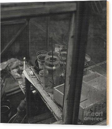Greenhouse Wood Print