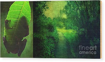 Greens Wood Print by Aimelle