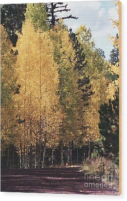 Wood Print featuring the photograph Greer Arizona Aspen Trees by Juls Adams
