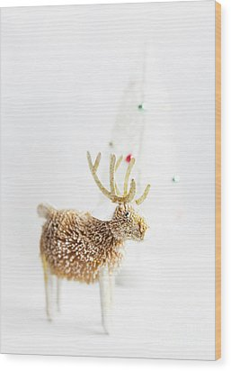 Wood Print featuring the photograph Greetings From North Pole by Elena Nosyreva