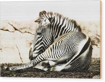 Grevy's Zebra Wood Print by Bill Tiepelman