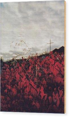 Grey And Red Wood Print by Sergey and Svetlana Nassyrov