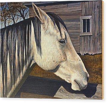 Grey Boy Wood Print by Bern Miller