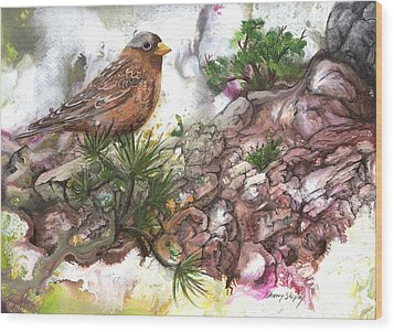 Wood Print featuring the painting Grey Crown Rosy Finch by Sherry Shipley
