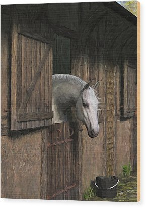 Grey Horse In The Stable - Waiting For Dinner Wood Print