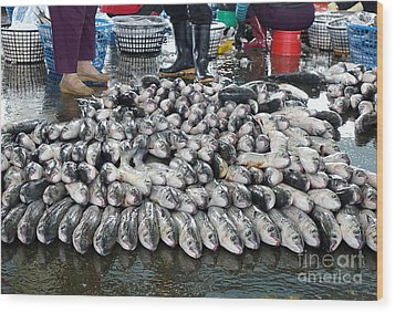 Wood Print featuring the photograph Grey Mullet Fish For Sale At The Fish Market by Yali Shi