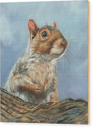 Wood Print featuring the painting Grey Squirrel by David Stribbling