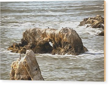 Wood Print featuring the photograph Grey Water At Window Rock by Barbara Snyder