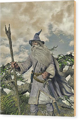 Grey Wizard II Wood Print by Dave Luebbert