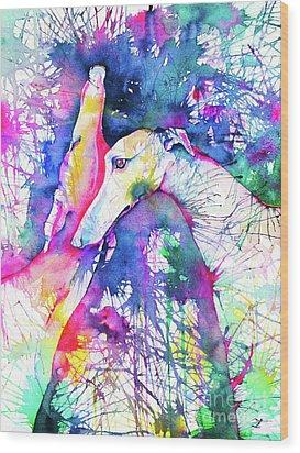 Greyhound Trance Wood Print by Zaira Dzhaubaeva