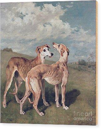 Greyhounds Wood Print by John Emms