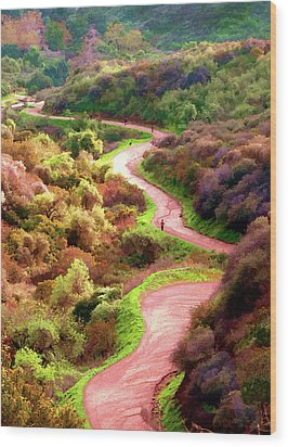 Griffith Park Trail Wood Print by Timothy Bulone