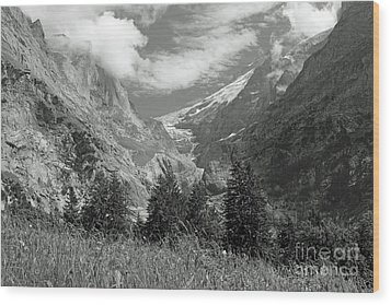 Grindelwald Glacier In Switzerland In Black And White Wood Print