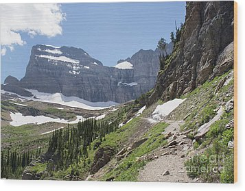 Grinnell Glacier Trail - Glacier National Park Wood Print