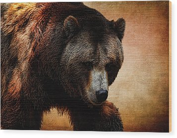 Grizzly Bear Wood Print by Judy Vincent