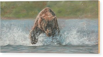 Grizzly Charge Wood Print by David Stribbling