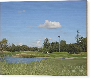 Groendael Golf The Netherlands Wood Print by Jan Daniels