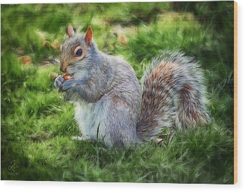 Wood Print featuring the photograph Ground Squirrel by Pennie  McCracken