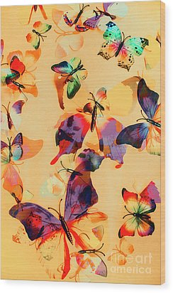 Group Of Butterflies With Colorful Wings Wood Print