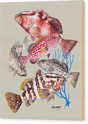 Grouper Montage Wood Print by Kevin Brant