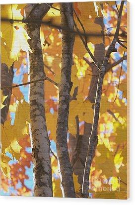 Growing Gold - Photograph Wood Print by Jackie Mueller-Jones