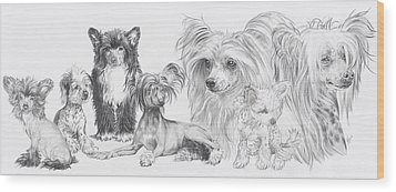 Growing Up Chinese Crested And Powderpuff Wood Print by Barbara Keith