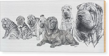 Wood Print featuring the drawing Growing Up Chinese Shar-pei by Barbara Keith