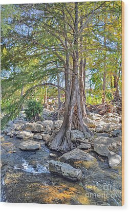 Guadalupe River Wood Print