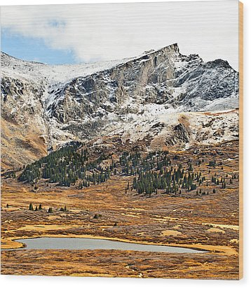 Guanella Pass Colorado Wood Print by Beth Riser