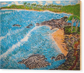 Guanica  P R      Wood Print by Felix Zapata