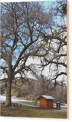 Wood Print featuring the photograph Guard Shack At Fort Tejon Lebec California by Floyd Snyder