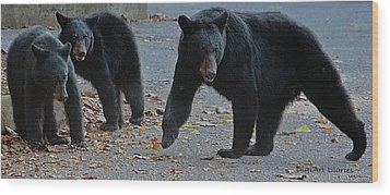 Guarding Her Cubs Wood Print by DigiArt Diaries by Vicky B Fuller