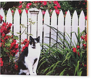 Guarding The Rose Garden Wood Print by Angela Davies