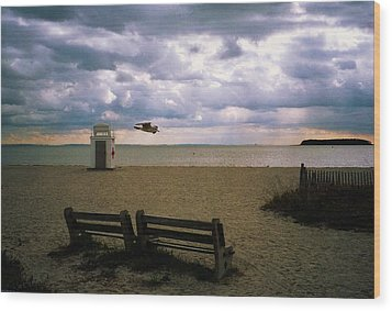 Wood Print featuring the photograph Gulf Beach by John Scates