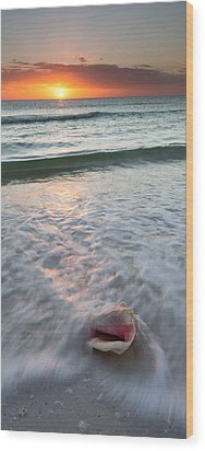 Wood Print featuring the photograph Gulf Coast Sunset  by Patrick Downey