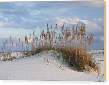Gulf Dunes Wood Print