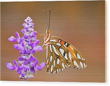 Gulf Fritillary Wood Print by Shelley Neff