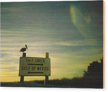 Gulf Sunset At The Suwannee River Wood Print by Warren Thompson