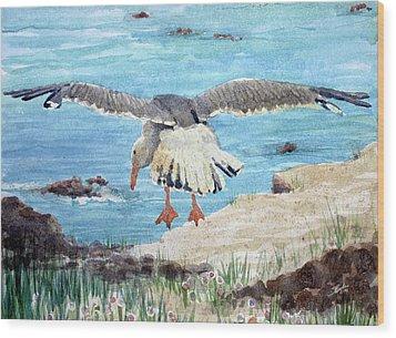 Gull On The Washington Coast Wood Print by Stephen Boyle