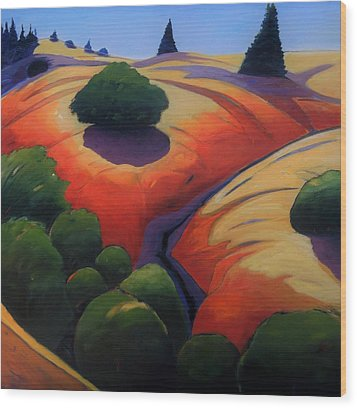 Wood Print featuring the painting Gully by Gary Coleman