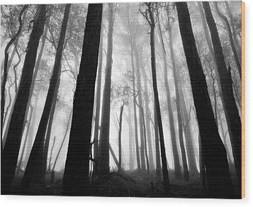 Bundaleer Wood Print by Mihai Florea