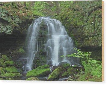 Gunn Brook Slip Dog Falls Mount Toby Wood Print by John Burk