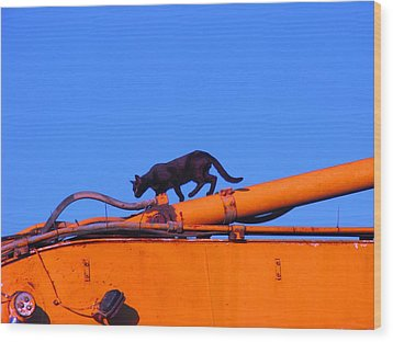 Gunther Gets On Top Of Things Wood Print